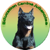 Education Canine Julienoise